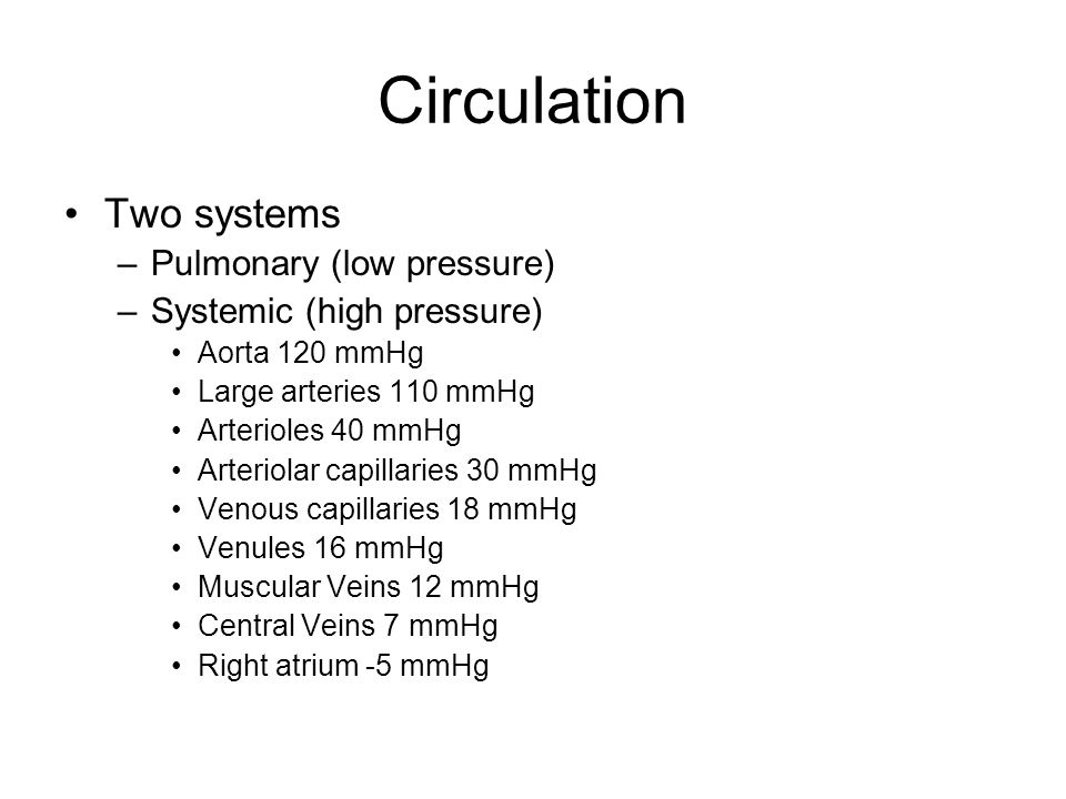 Circulation Two systems Pulmonary (low pressure)