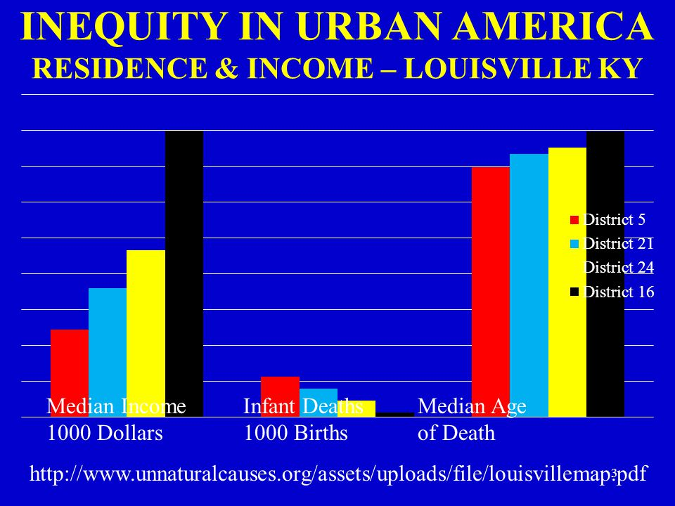 INEQUITY IN URBAN AMERICA RESIDENCE & INCOME – LOUISVILLE KY