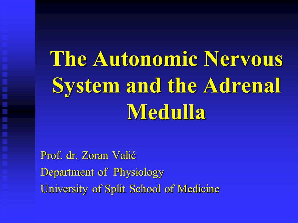 The Autonomic Nervous System and the Adrenal Medulla
