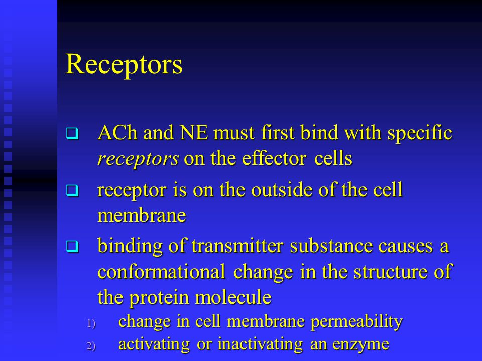 Receptors ACh and NE must first bind with specific receptors on the effector cells. receptor is on the outside of the cell membrane.
