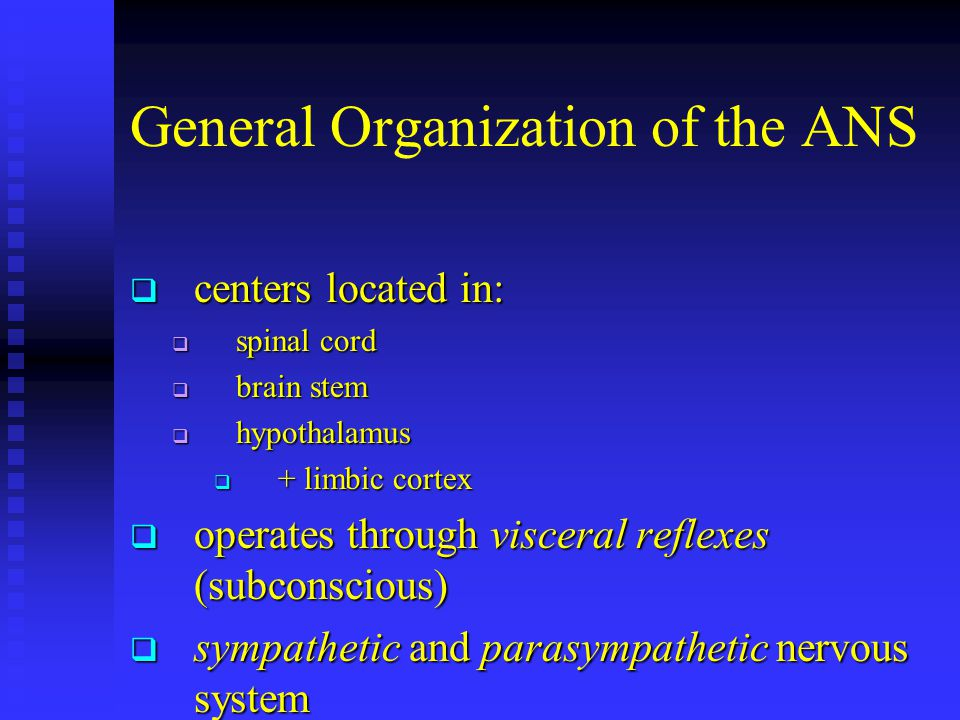 General Organization of the ANS