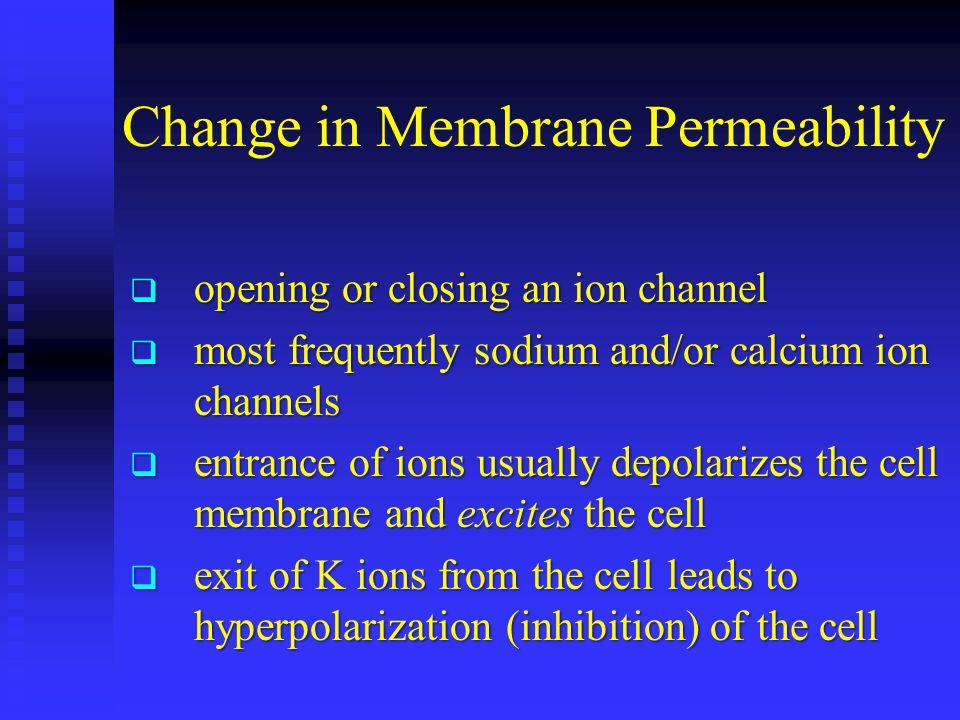Change in Membrane Permeability
