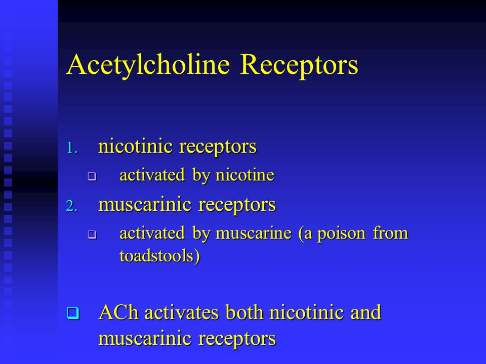 Acetylcholine Receptors