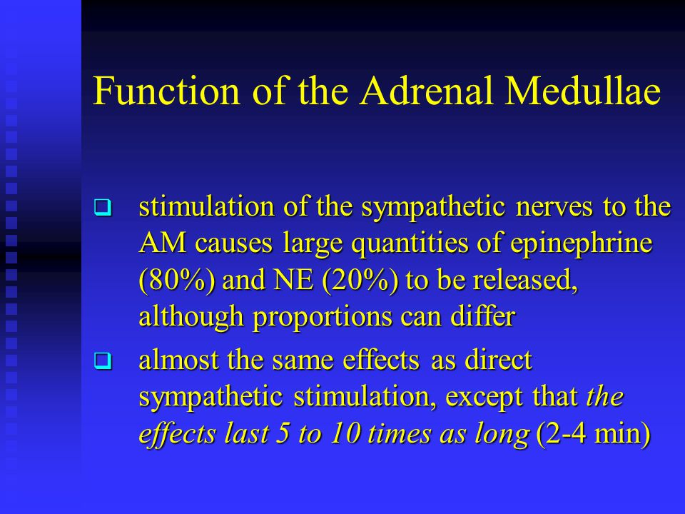 Function of the Adrenal Medullae