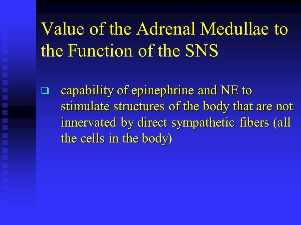 Value of the Adrenal Medullae to the Function of the SNS