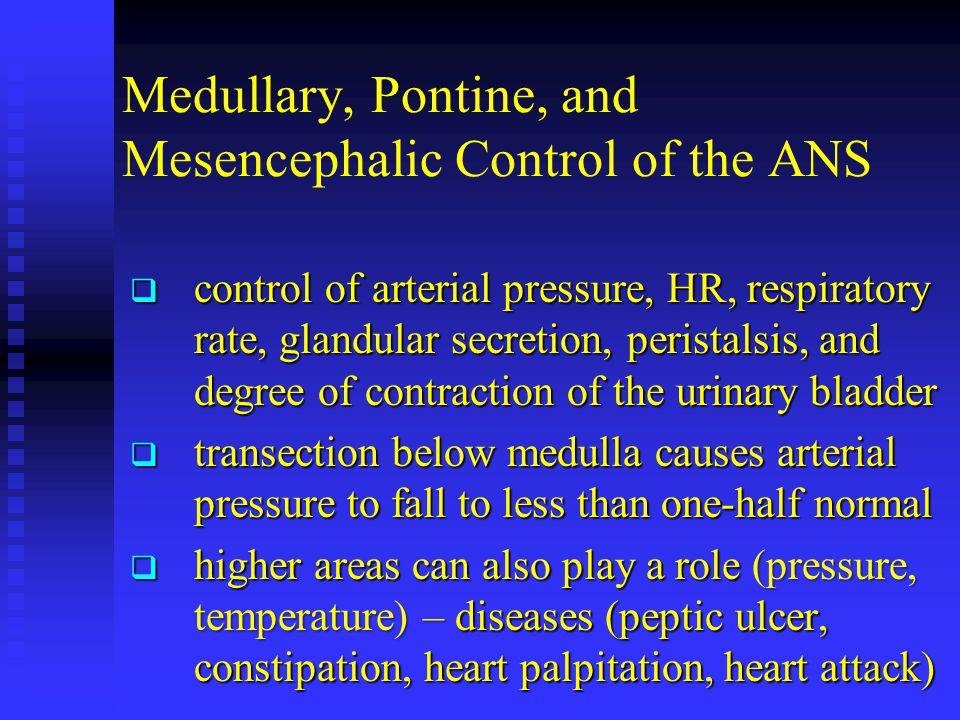 Medullary, Pontine, and Mesencephalic Control of the ANS