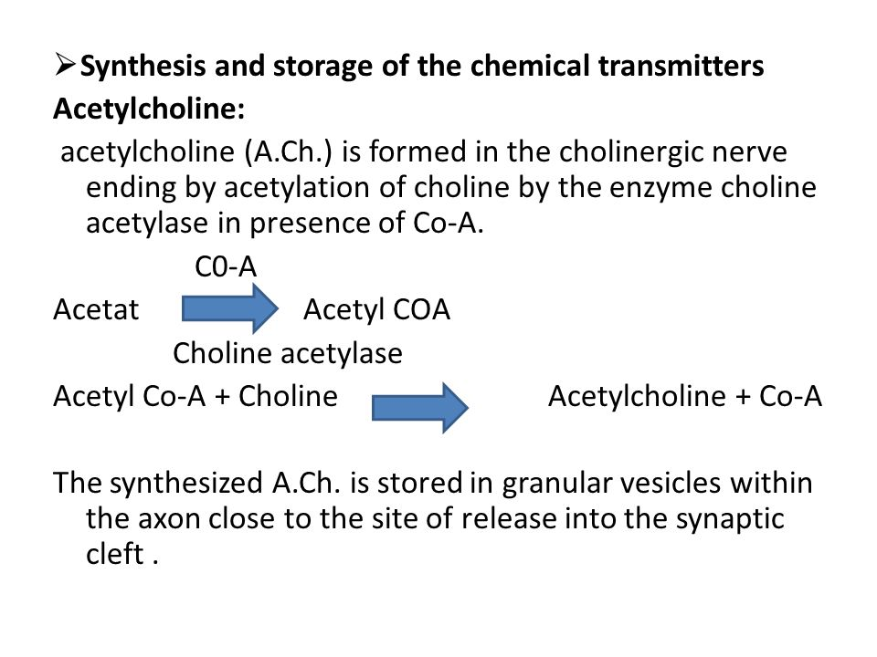 Synthesis and storage of the chemical transmitters