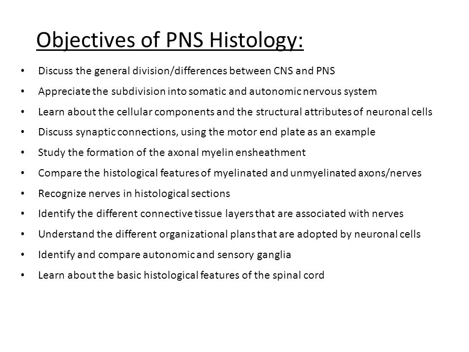 Objectives of PNS Histology: