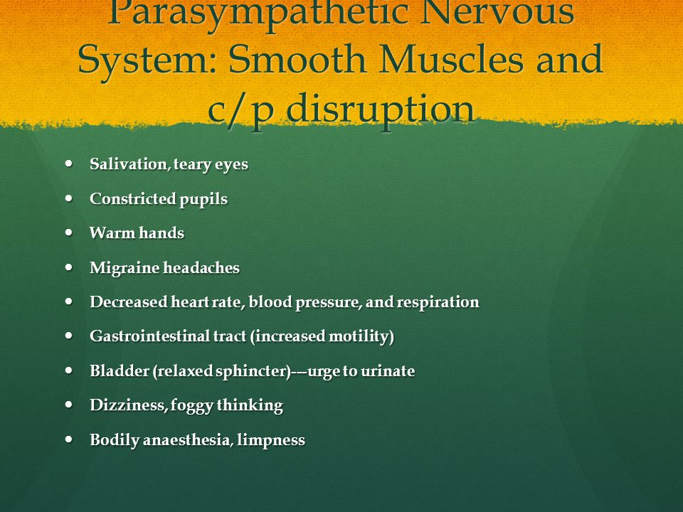 Parasympathetic Nervous System: Smooth Muscles and c/p disruption
