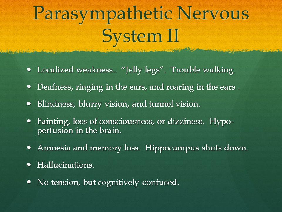 Parasympathetic Nervous System II
