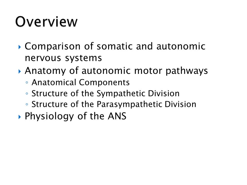 Overview Comparison of somatic and autonomic nervous systems