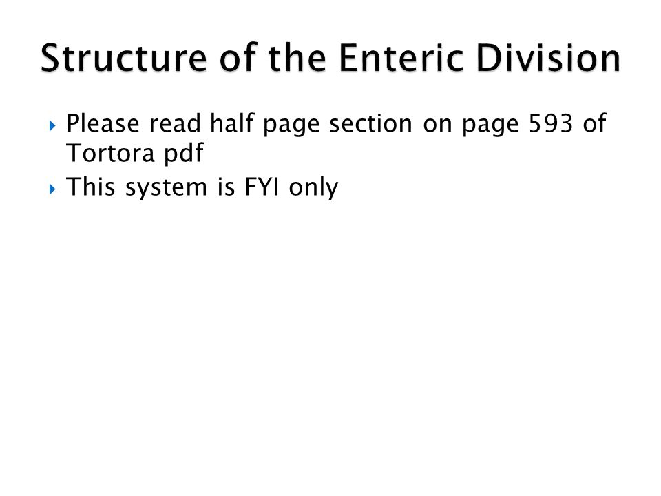 Structure of the Enteric Division