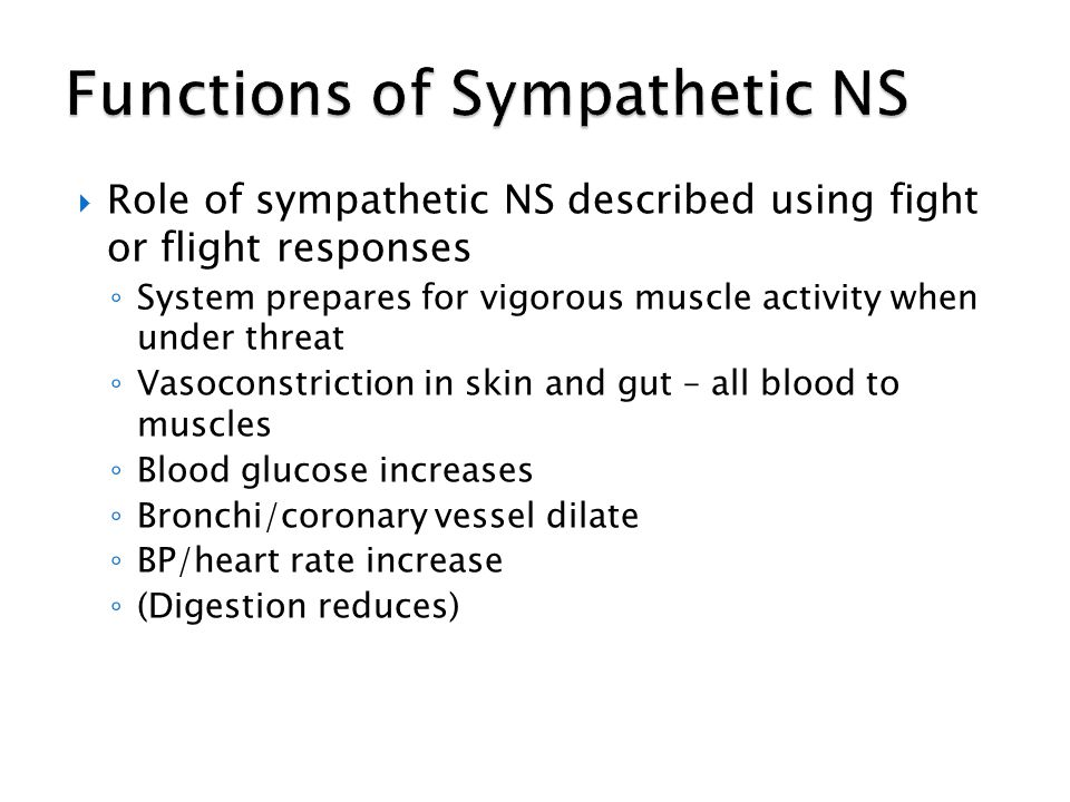 Functions of Sympathetic NS