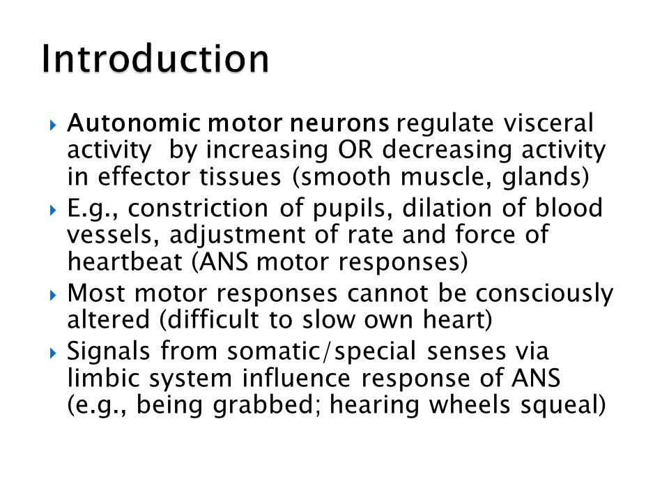 Introduction Autonomic motor neurons regulate visceral activity by increasing OR decreasing activity in effector tissues (smooth muscle, glands)