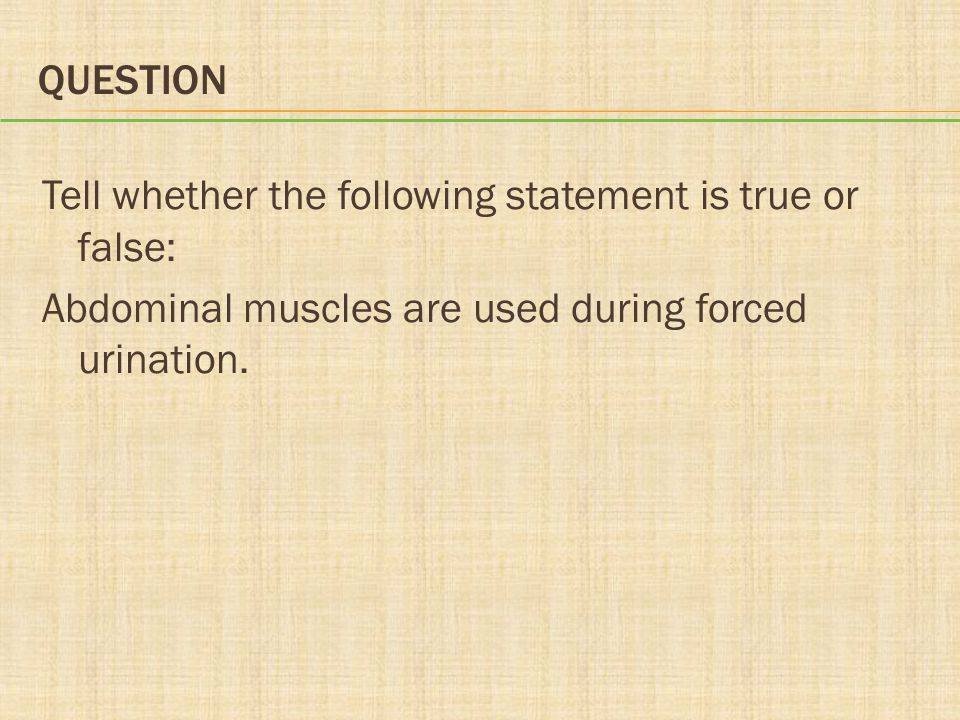 Question Tell whether the following statement is true or false: Abdominal muscles are used during forced urination.