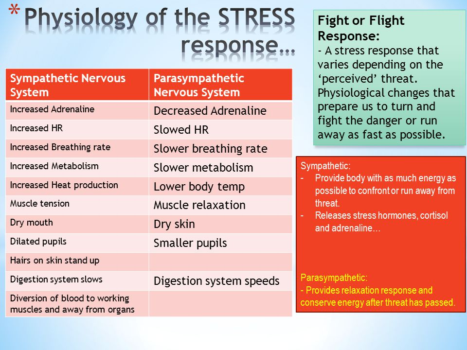 Physiology of the STRESS response…