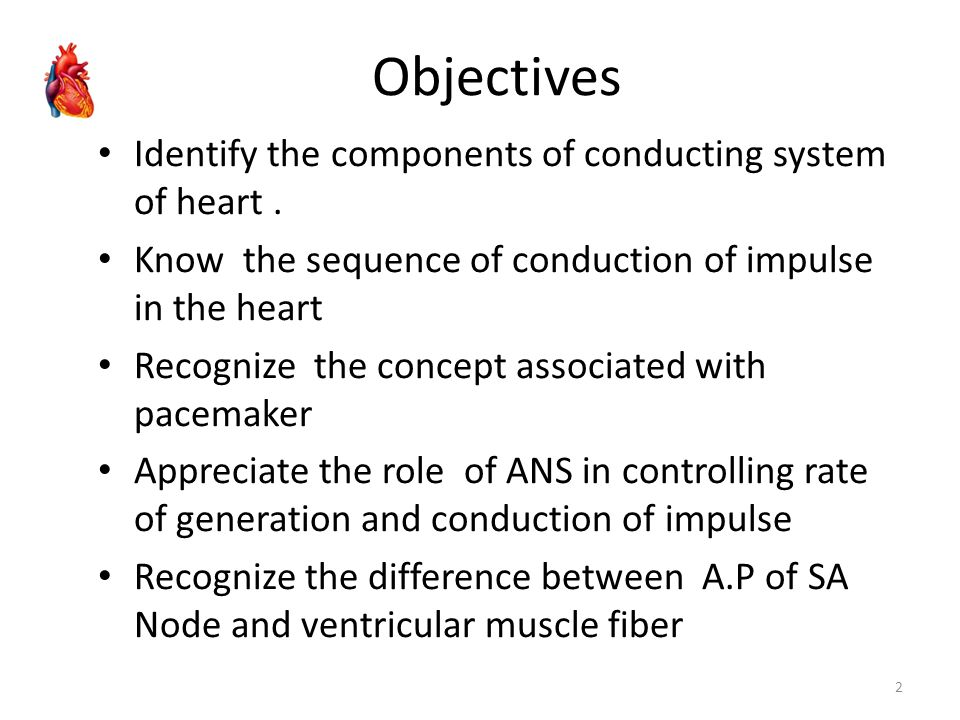 Objectives Identify the components of conducting system of heart .