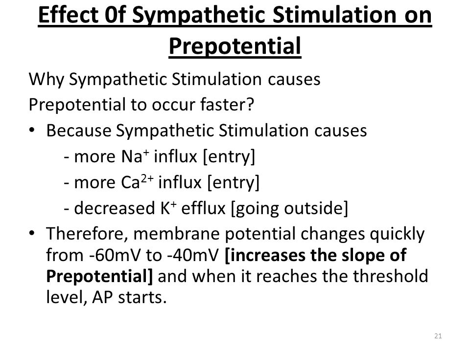 Effect 0f Sympathetic Stimulation on Prepotential
