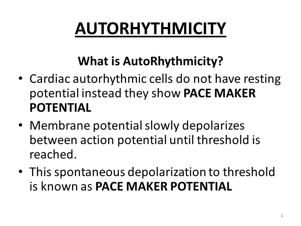 What is AutoRhythmicity