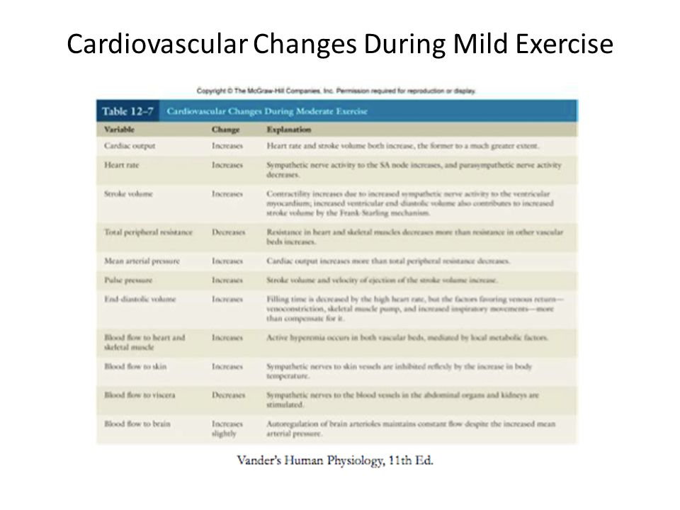 Cardiovascular Changes During Mild Exercise
