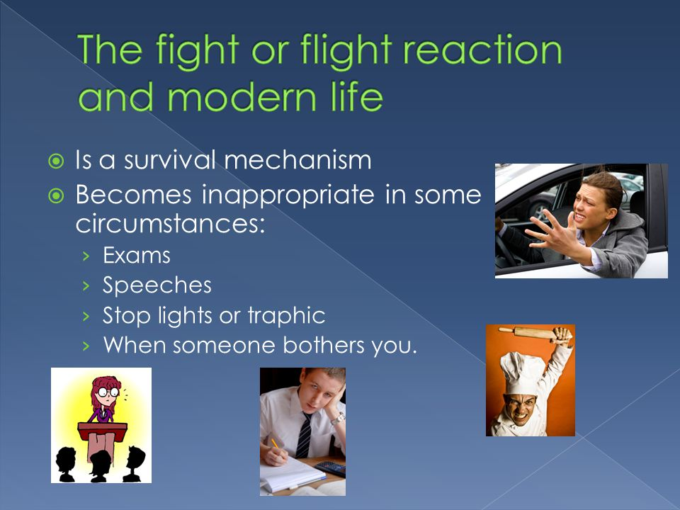 The fight or flight reaction and modern life