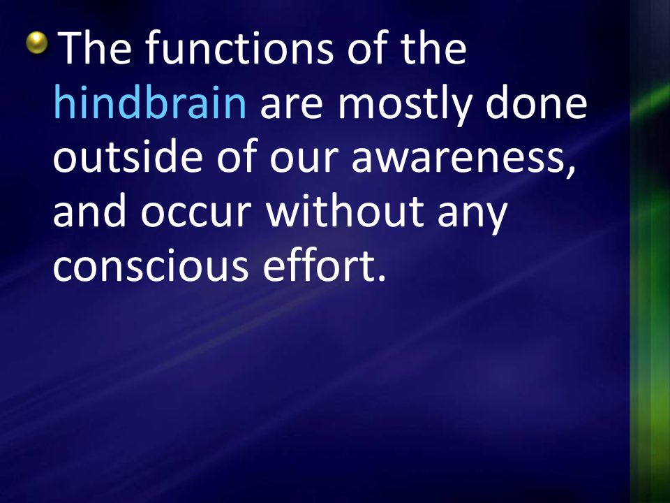 The functions of the hindbrain are mostly done outside of our awareness, and occur without any conscious effort.