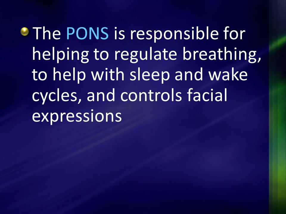 The PONS is responsible for helping to regulate breathing, to help with sleep and wake cycles, and controls facial expressions
