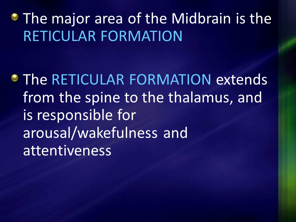 The major area of the Midbrain is the RETICULAR FORMATION