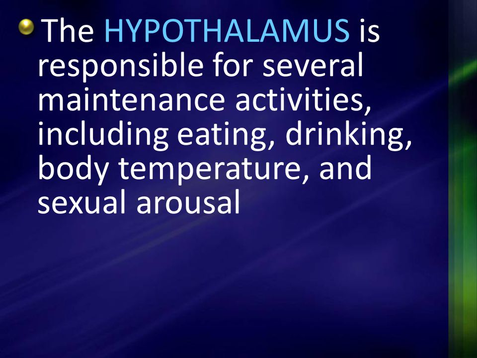 The HYPOTHALAMUS is responsible for several maintenance activities, including eating, drinking, body temperature, and sexual arousal