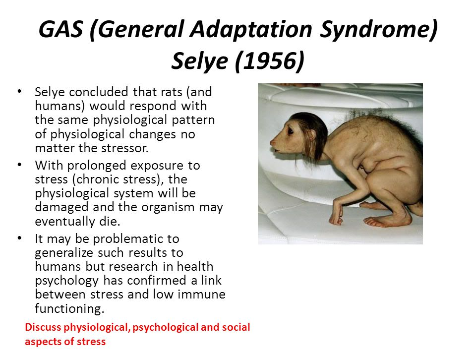 GAS (General Adaptation Syndrome) Selye (1956)