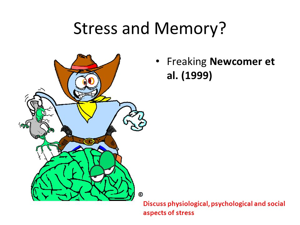Stress and Memory Freaking Newcomer et al. (1999)