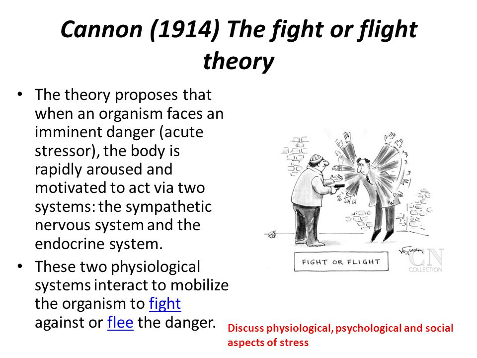 Cannon (1914) The fight or flight theory