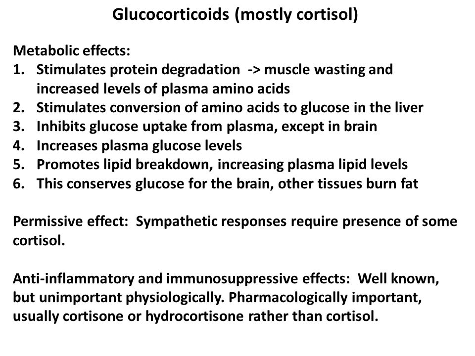 Glucocorticoids (mostly cortisol)