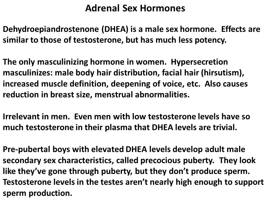 Adrenal Sex Hormones Dehydroepiandrostenone (DHEA) is a male sex hormone. Effects are similar to those of testosterone, but has much less potency.