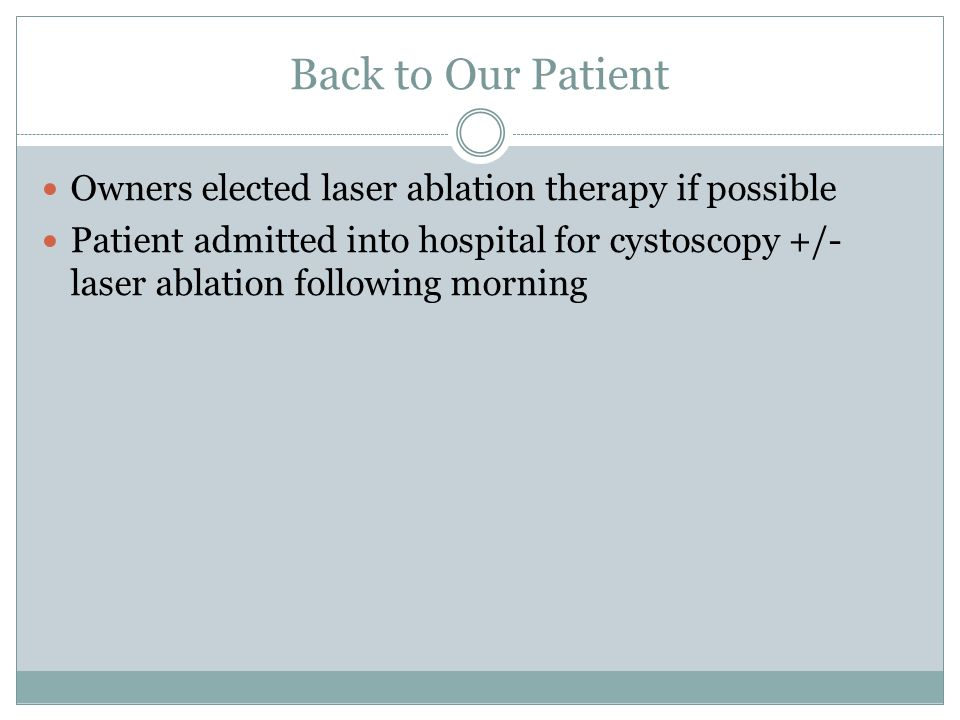 Back to Our Patient Owners elected laser ablation therapy if possible