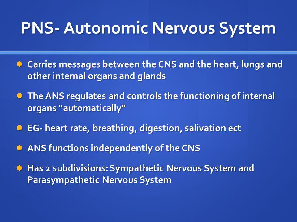 PNS- Autonomic Nervous System