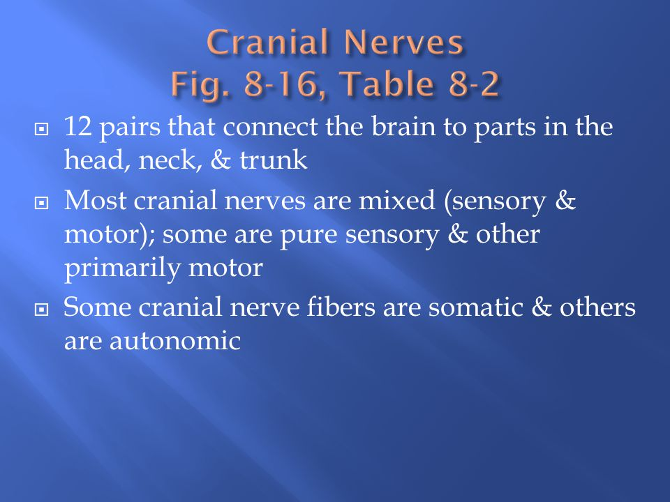 Cranial Nerves Fig. 8-16, Table 8-2