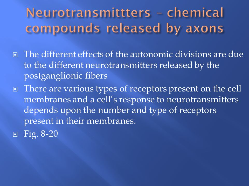 Neurotransmittters – chemical compounds released by axons