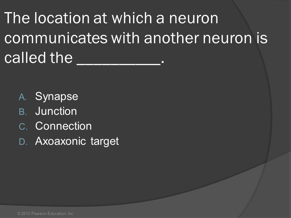 The location at which a neuron communicates with another neuron is called the __________.