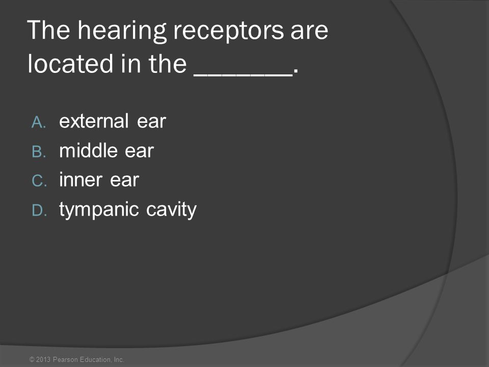 The hearing receptors are located in the _______.