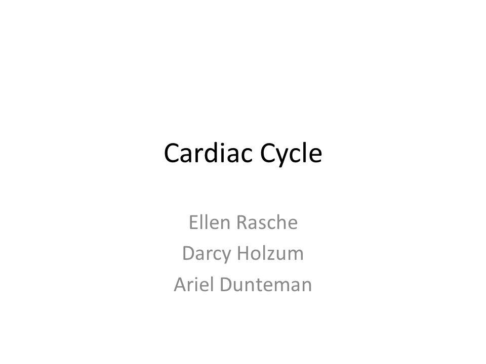 Ellen Rasche Darcy Holzum Ariel Dunteman