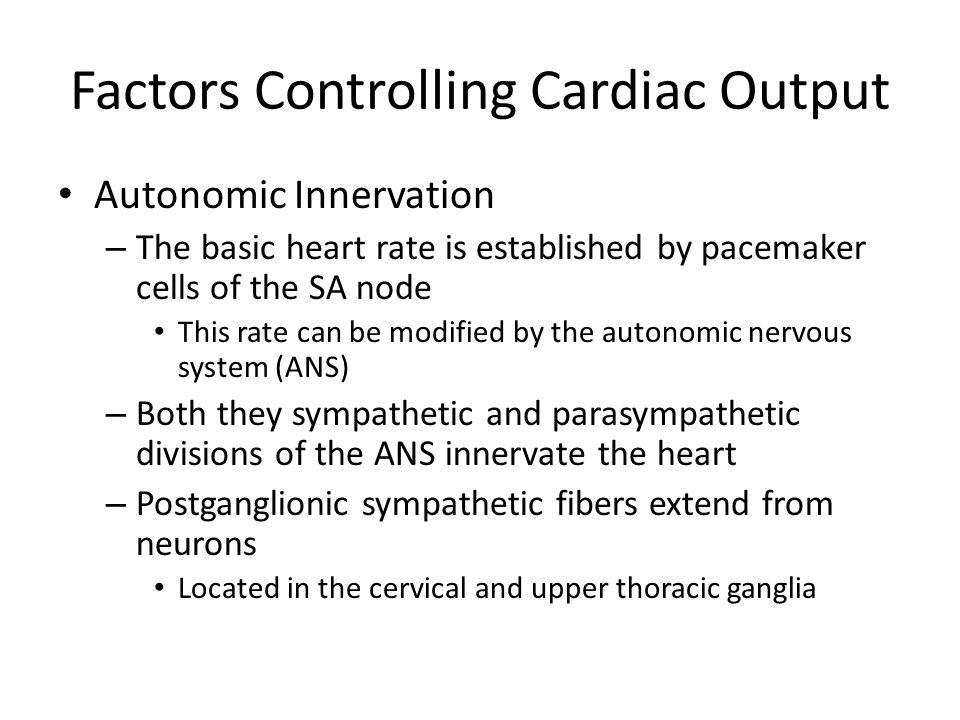 Factors Controlling Cardiac Output
