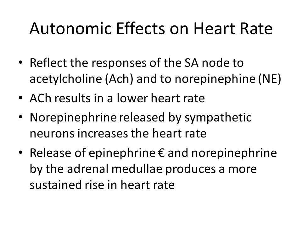 Autonomic Effects on Heart Rate