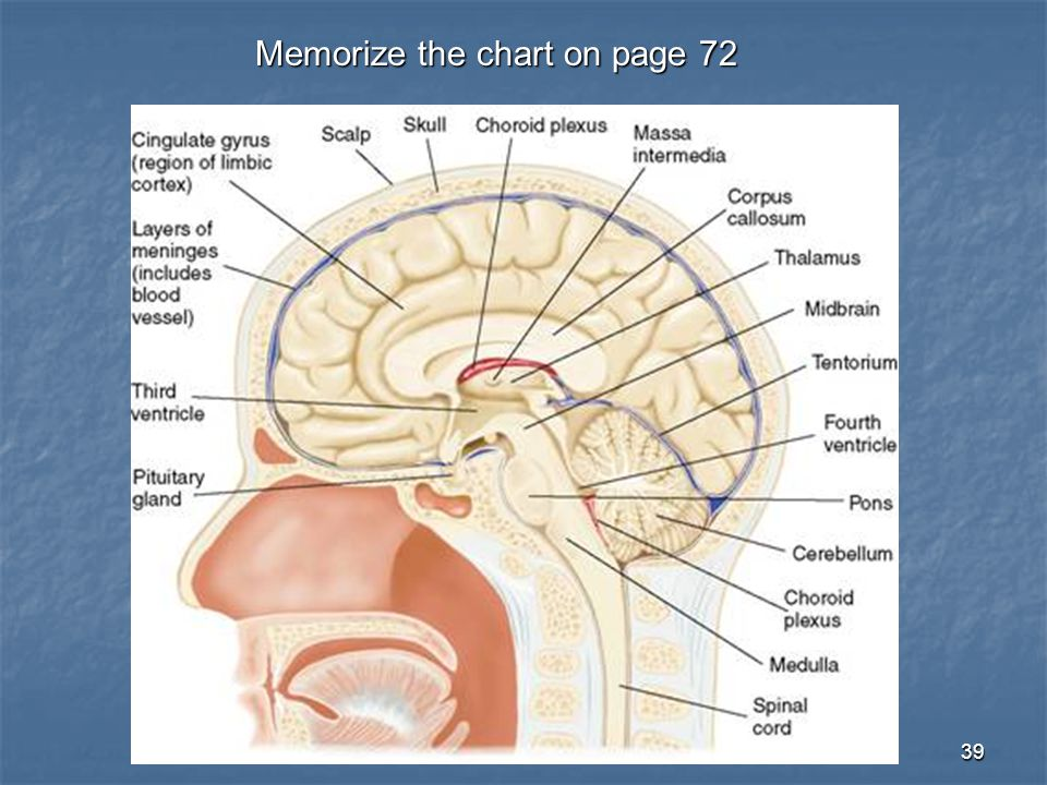 Memorize the chart on page 72