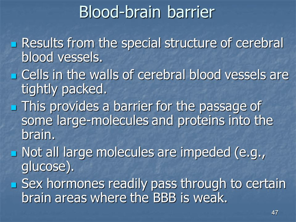 Blood-brain barrier Results from the special structure of cerebral blood vessels. Cells in the walls of cerebral blood vessels are tightly packed.