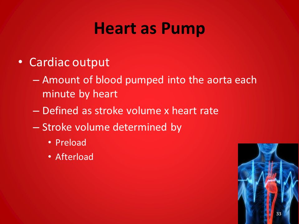 Heart as Pump Cardiac output