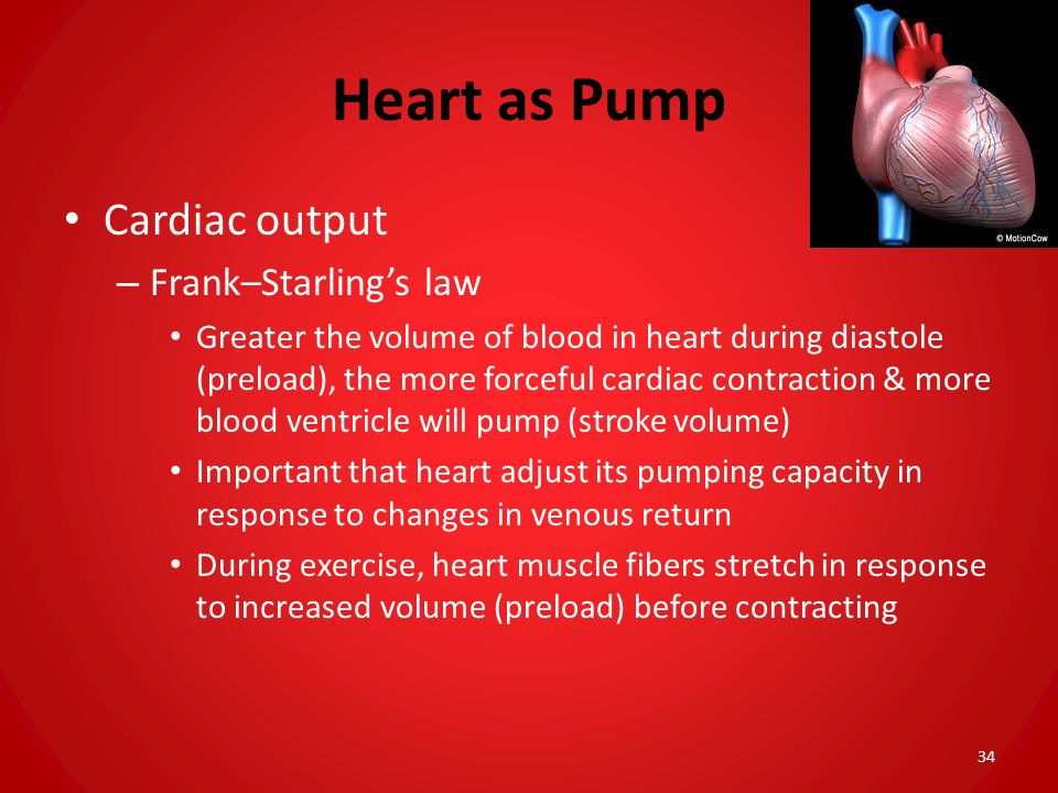 Heart as Pump Cardiac output Frank–Starling's law