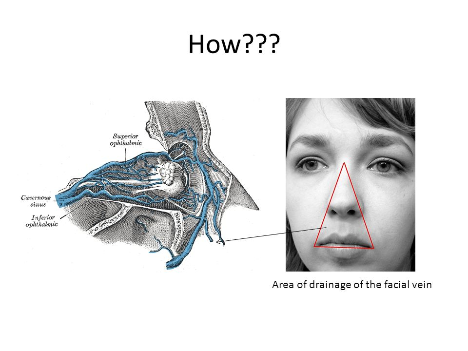 How Area of drainage of the facial vein