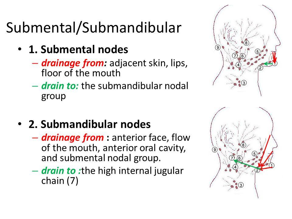 Submental/Submandibular