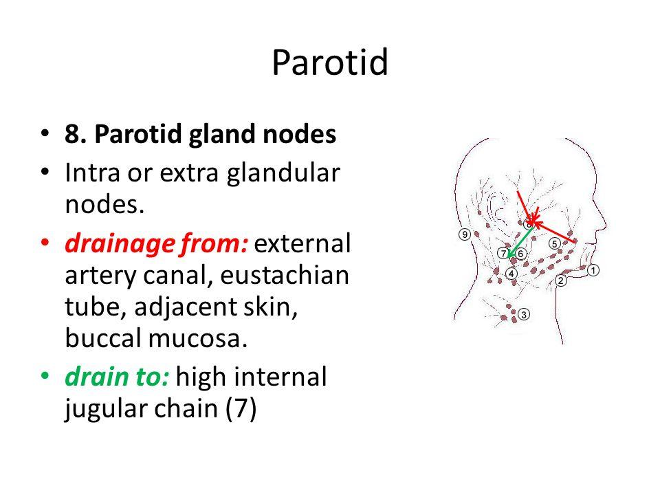 Parotid 8. Parotid gland nodes Intra or extra glandular nodes.